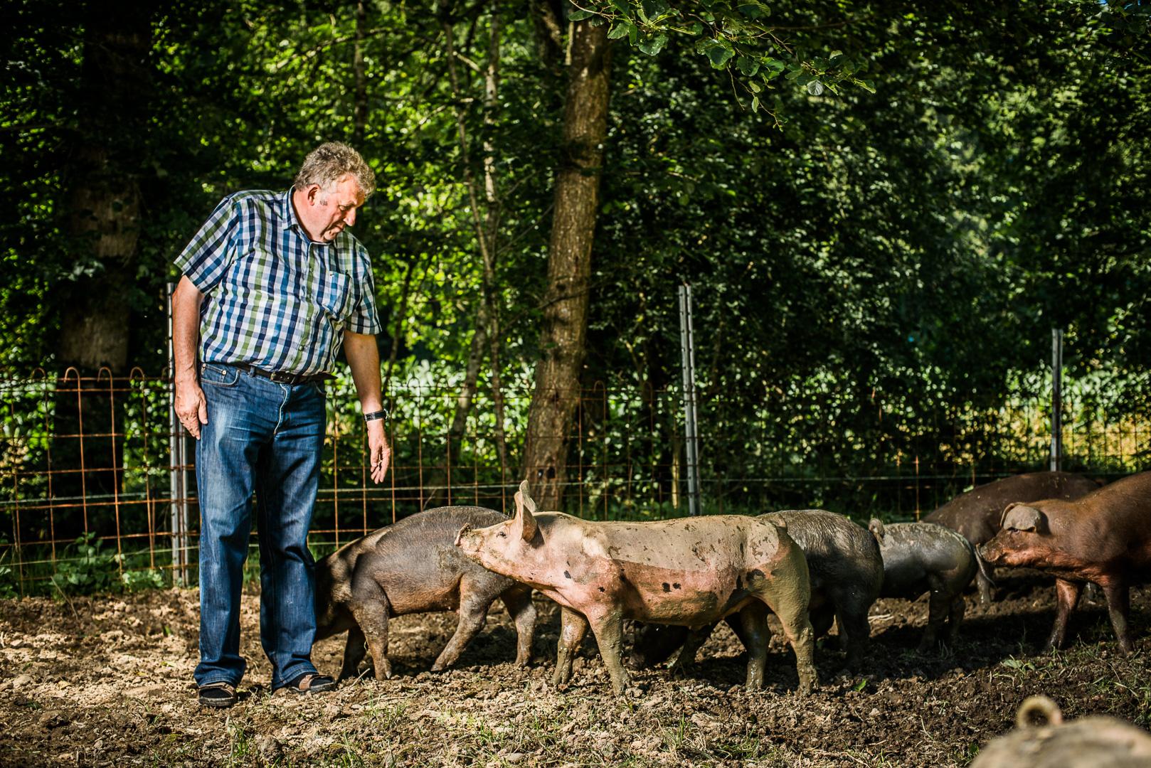 waldschweine_schneeberger_c-mavric-12790